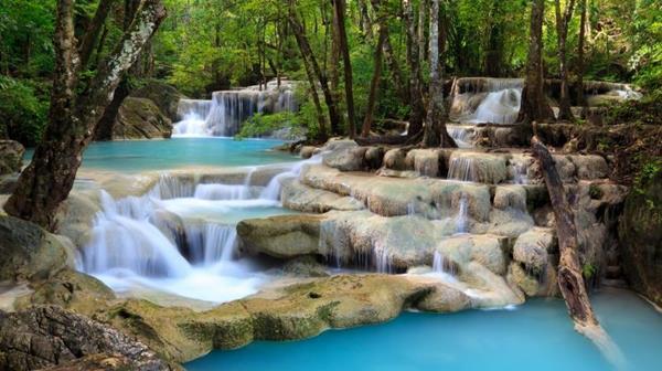 élet-elixír a víz