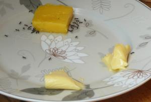 margarin rossz zsír