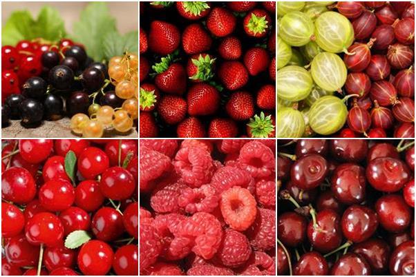 június gyümölcsök